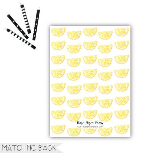 Lemon Birthday Invitation Back